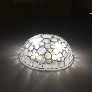 our beautiful shell light
